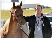 Quarter Horses  Zucht Michael Middel
